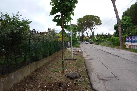 Via Mozzoni