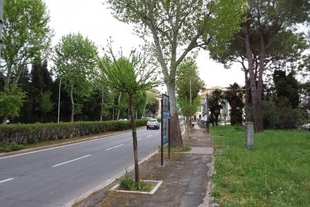 Via Aleardi