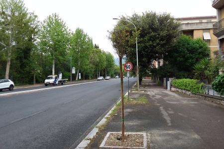 Viale dello Stadio