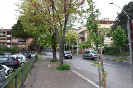 Via Battisti