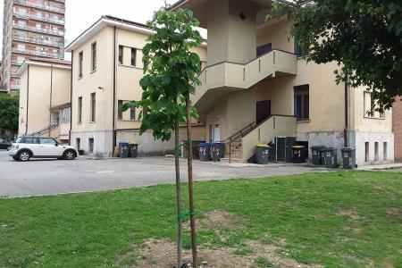 Scuola Battisti