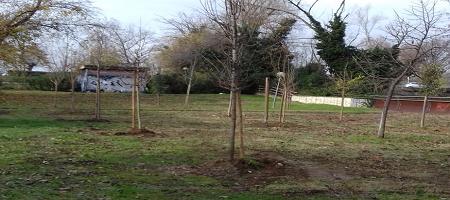 Via XX Settembre - Giardini Nino Bixio