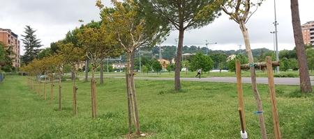Ciclodromo Perona